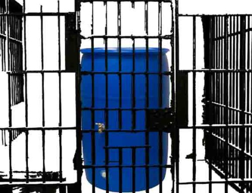 Tossed in jail for that third rain barrel?